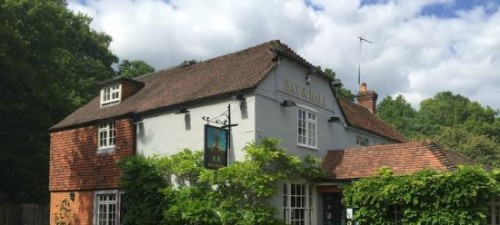 Bat and Ball, Farnham